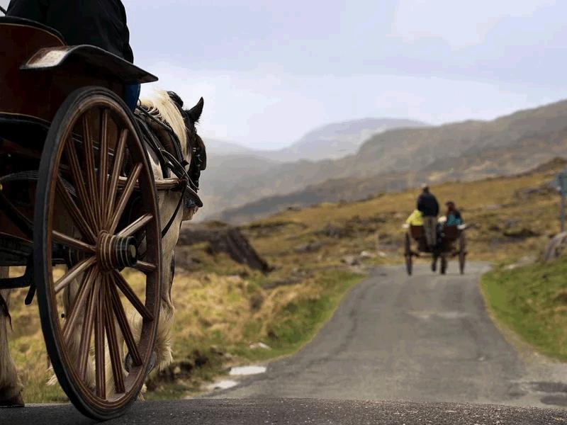 27 | Jaunting Cars & Horse Riding